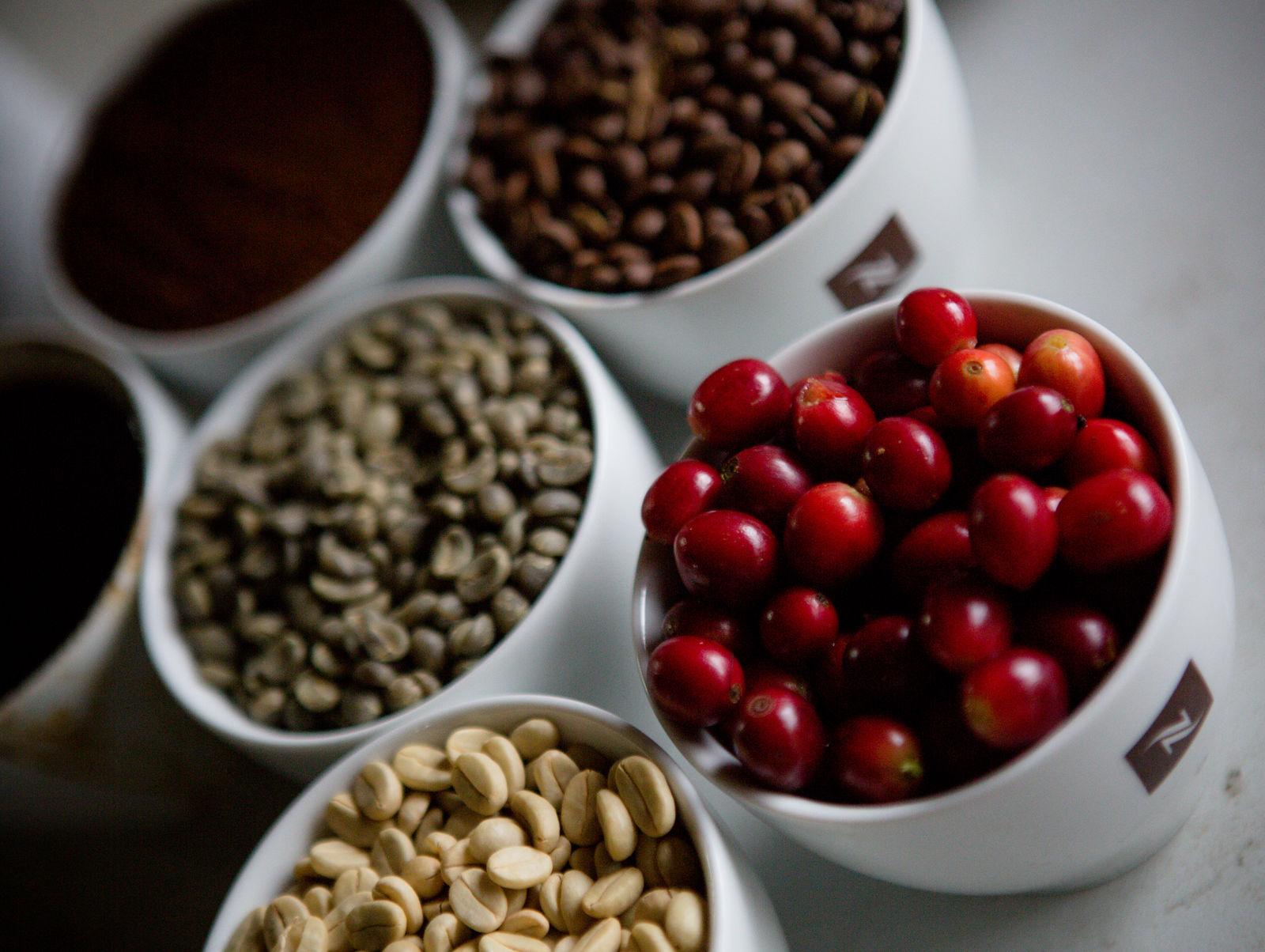 Bohnen_Nespresso