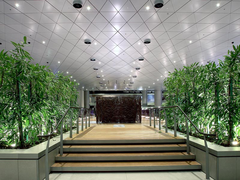 Qatar Business Lounge Review Test