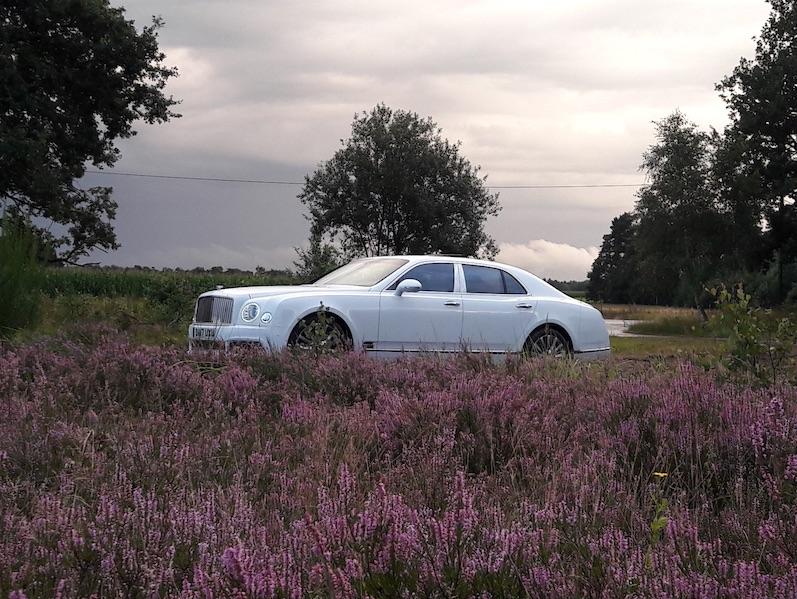 Ein Brite mitten in der Heide. Foto: Corinna Keller