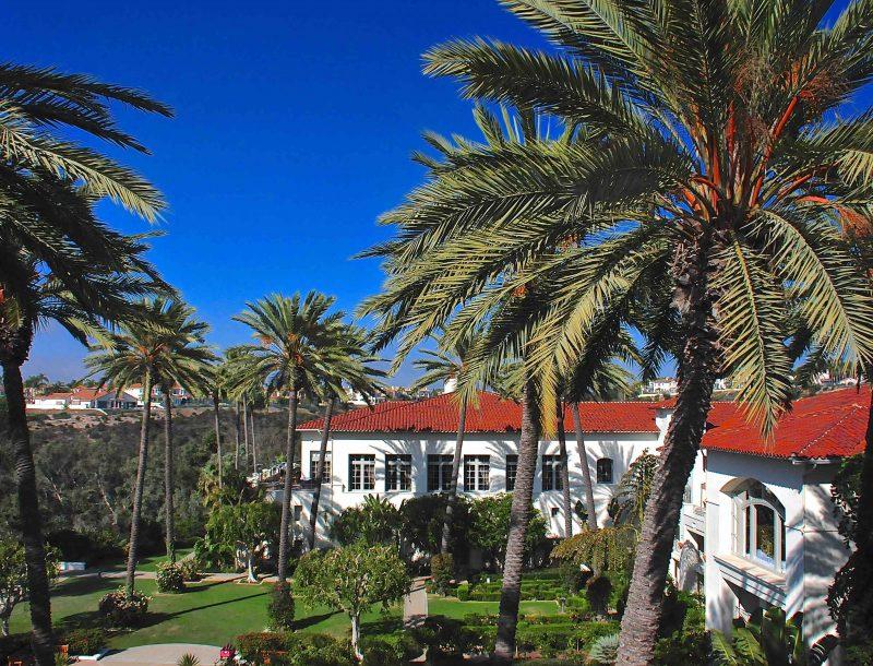 Park Hotel Aviara: Palmen und blauer Himmel