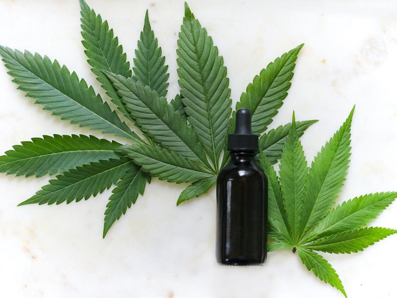 CBD und seine Legalisierung