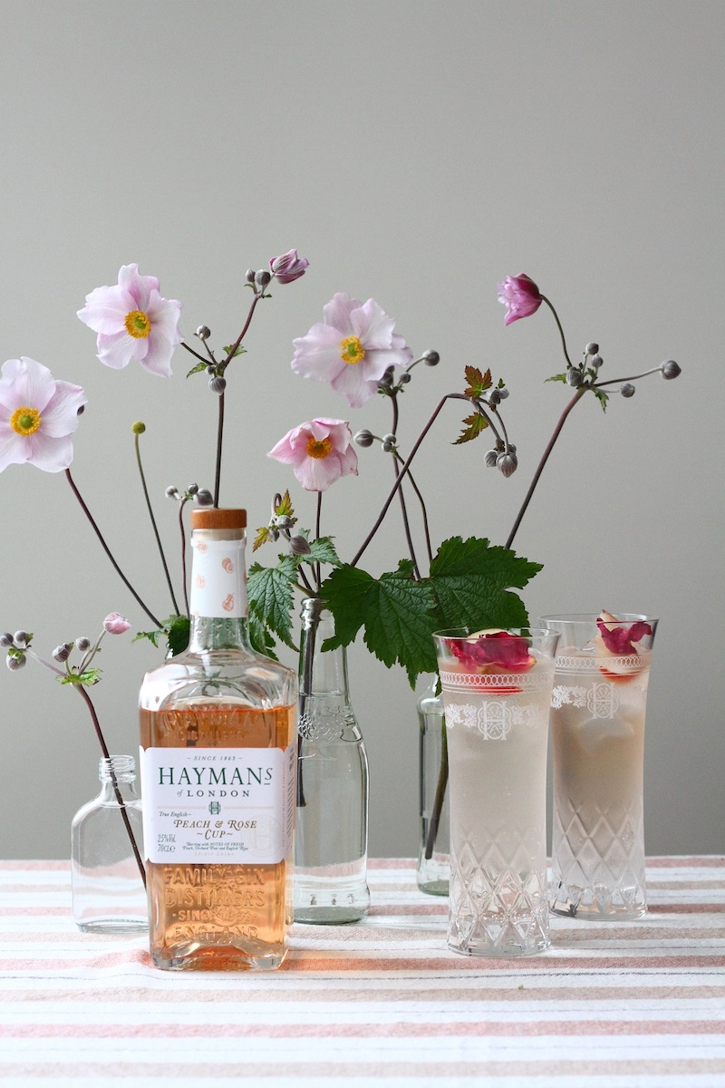 Haymans Gin Test Peach and Rose Cup
